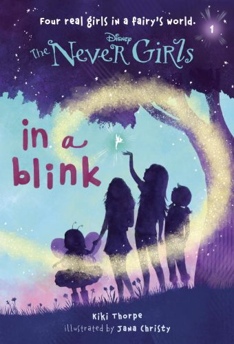 In a Blink, Book Cover
