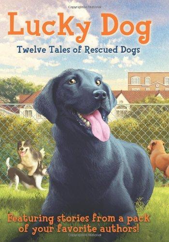 Lucky Dog, Book Cover