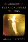 The Museum of Extraordinary Things Book Cover