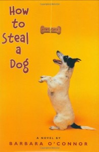 How to Steal a Dog, Book Cover
