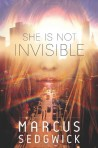 She Is Not Invisible, Book Cover