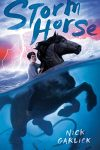 Storm Horse, Book Cover